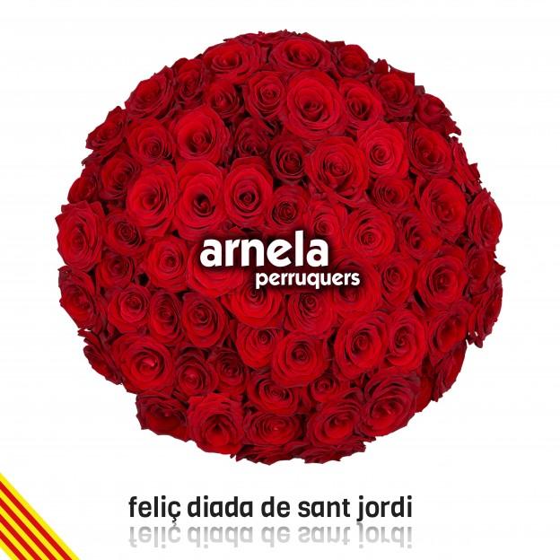 Arnela-StJordi-2015